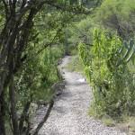 Sendero, Terreno, Bio Grand Juriquilla Queretaro