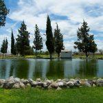 Lago-en-Sonterra-Arboretto-Residencial-Queretaro